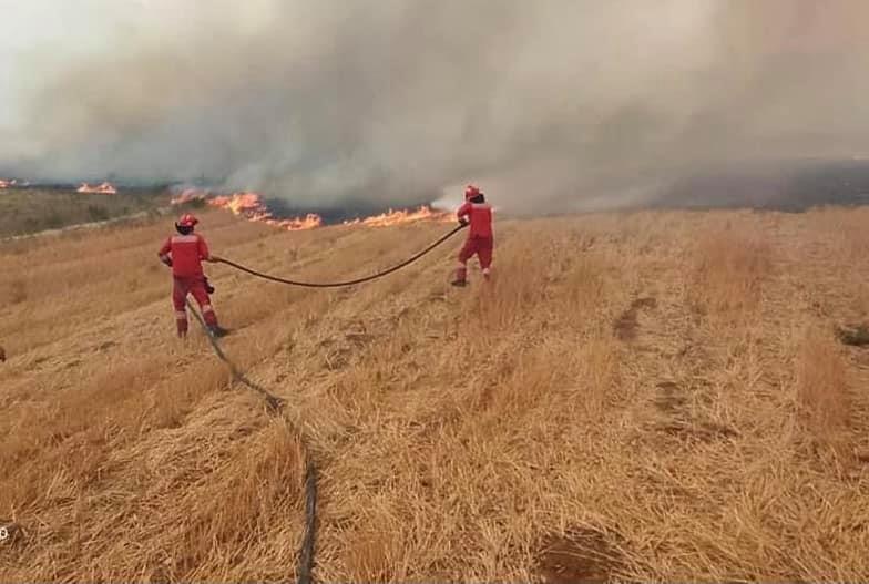 Situata me zjarret, Rama: U shmang e keqja më e madhe në Selenicë, në Llogara po largojmë flakët