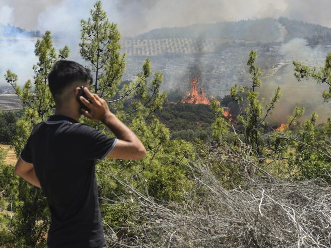 Ndezën pyjet, arrestohet fermeri shqiptar në Itali, në pranga dhe një 80 vjeçar