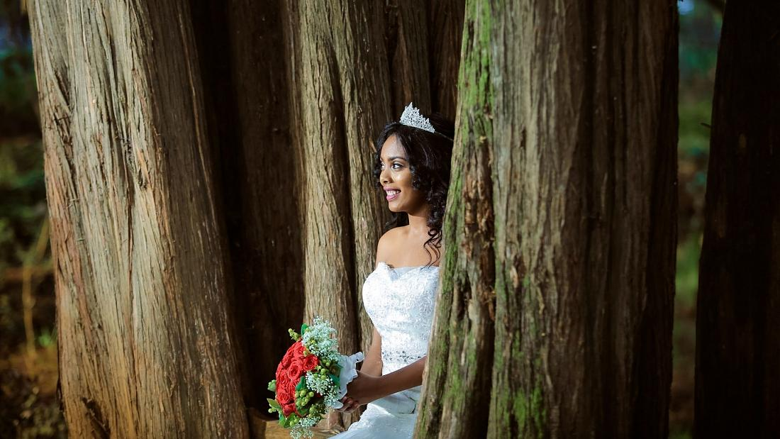 """Për t'i shpëtuar nga prerja, 70 gra """"martohen"""" me pemë"""