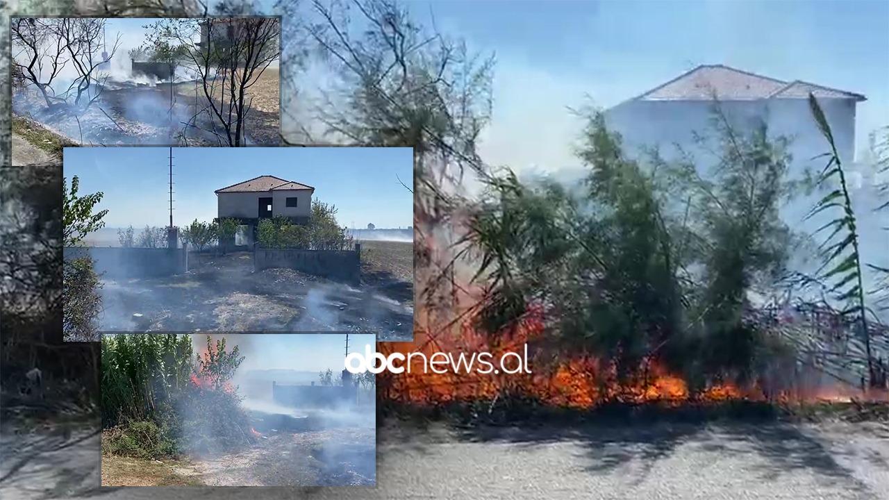 Bie zjarr në Fier, përfshihet nga flakët një banesë