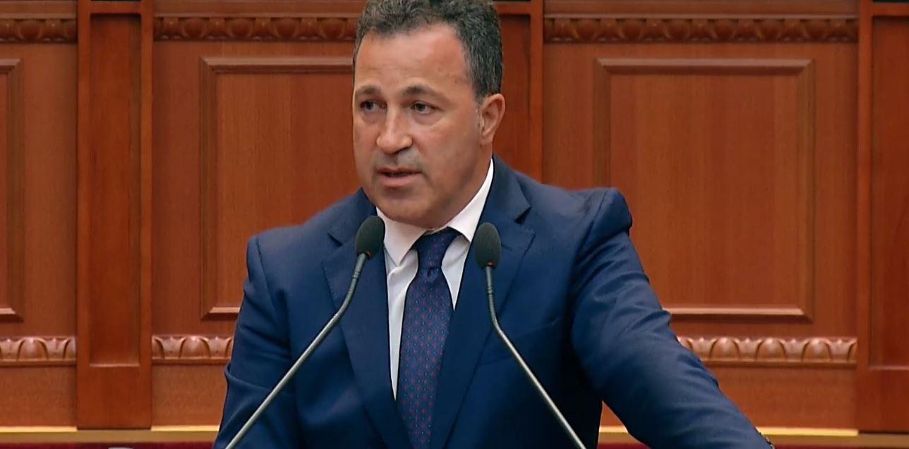 Niko Peleshi: Forcat e Armatosura do nxjerrin liderë, kurset në të ardhmen në gjuhën angleze