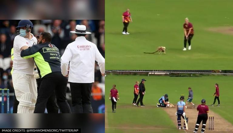 """VIDEO/ Qeni """"vjedh"""" shfaqjen në gjysmë-finalen e kriketit, dhuron show me topin"""