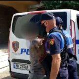Shtatë të arrestuar në Fier, policia jep detajet